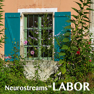 Neurostreams™ <b>LABOR</b>