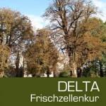 <b>Delta Frischzellenkur</b>  ab 6,85 €