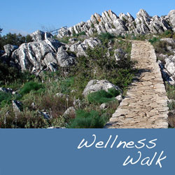 <b>Wellness Walk</b>  18,95 €