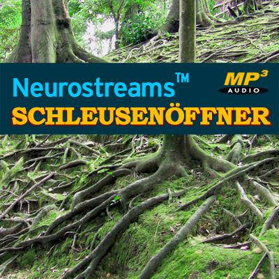 Neurostreams™ Schleusenöffner