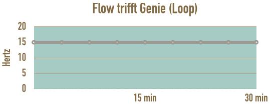 verlauf-loop-flow-trifft-genie-im-flow