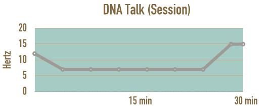 verlauf-session-dna-talk-meditieren