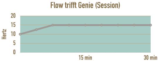 verlauf-session-flow-trifft-genie-im-flow
