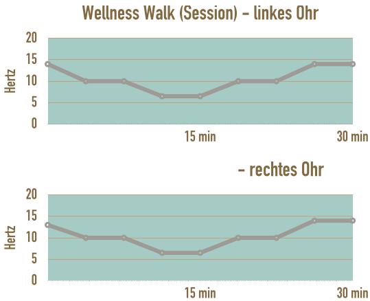 verlauf-session-wellness-walk-stress-abbauen